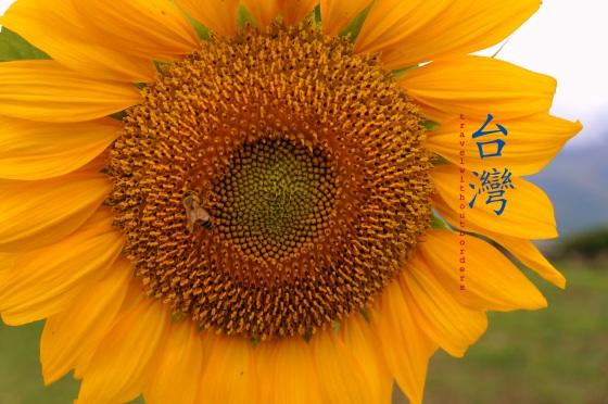 Da Nong Da Fu Forest Park, Hualien