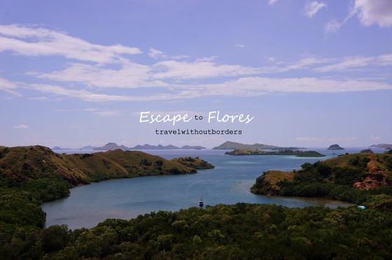 Pulau Rinca