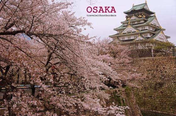 Pearl of Osaka!