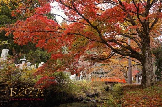 Mt Koya, Japan