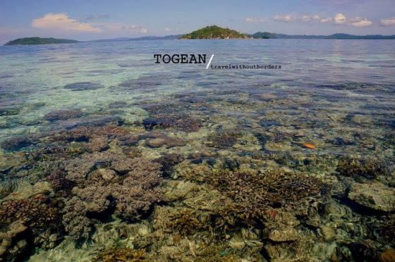 Togean, Celebes